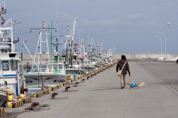 海明け間近い漁港