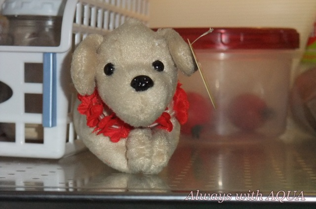 冷蔵庫の番犬