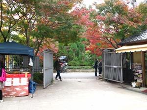 嵯峨野トロッコ列車嵐山駅