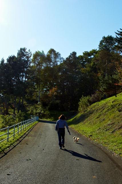 山道を行く